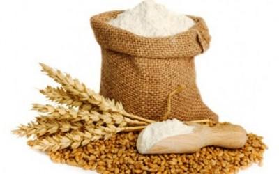Conservare la farina: come e dove